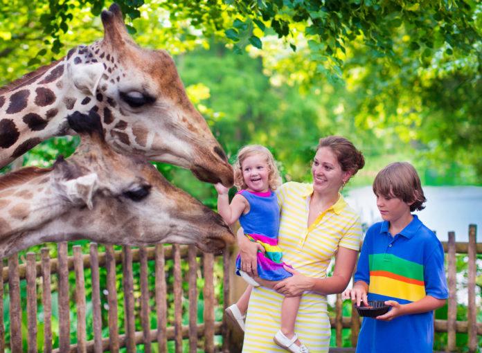 Ausflüge mit Kleinkindern und Babys gut planen