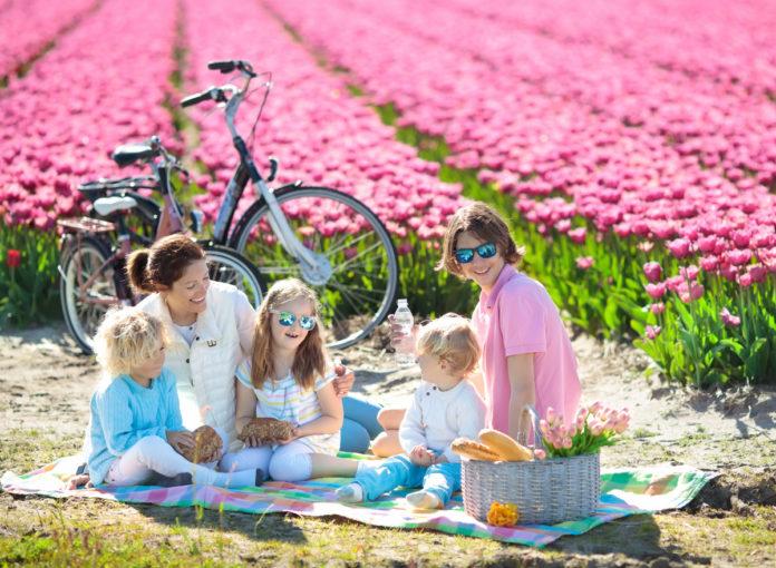 Urlaub in Holland mit Baby oder Kind /
