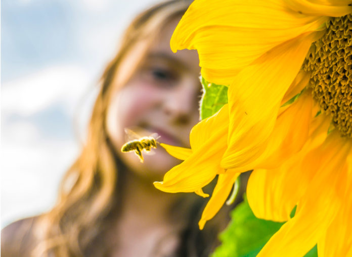 Kind Bienenstich behandeln Symptome Wespenstich Schwellung kühlen